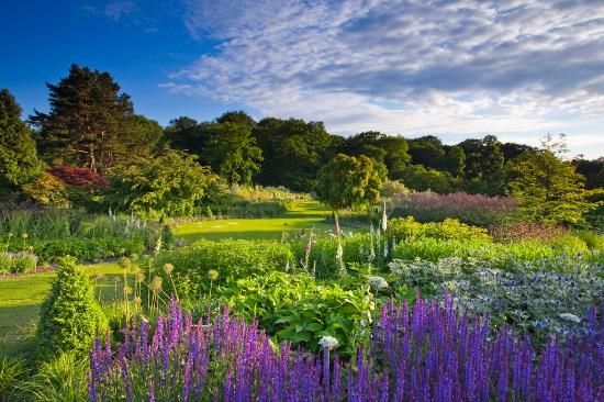 picture of Harlow Carr